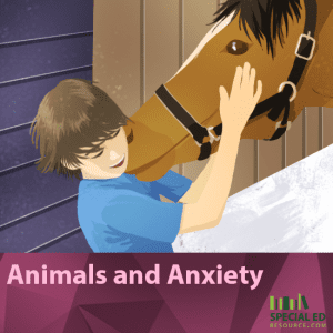 Animals and Anxiety