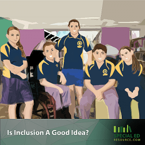 Is Inclusion A Good Idea?