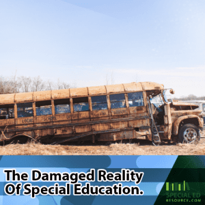 The Damaged Reality Of Special Education